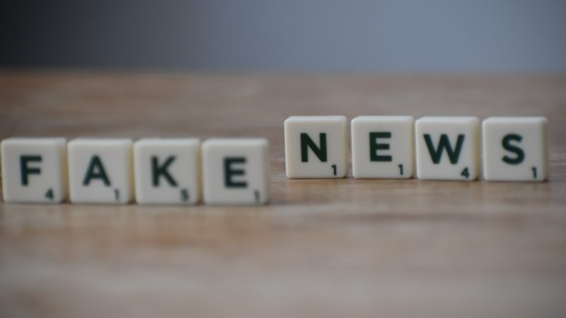 Stop alle fake news, nasce l'Osservatorio europeo dei media digitali (EDMO)