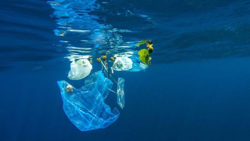 Plastica: gli interrogativi, l'origine e il riciclo alternativo