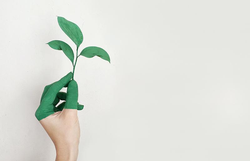 Sui binari della sostenibilità. Binomio territorio-impresa alle porte del futuro