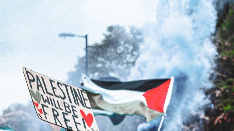 Come nella storia biblica di Davide e Golia, la Palestina resiste al colonialismo del gigante Israele.